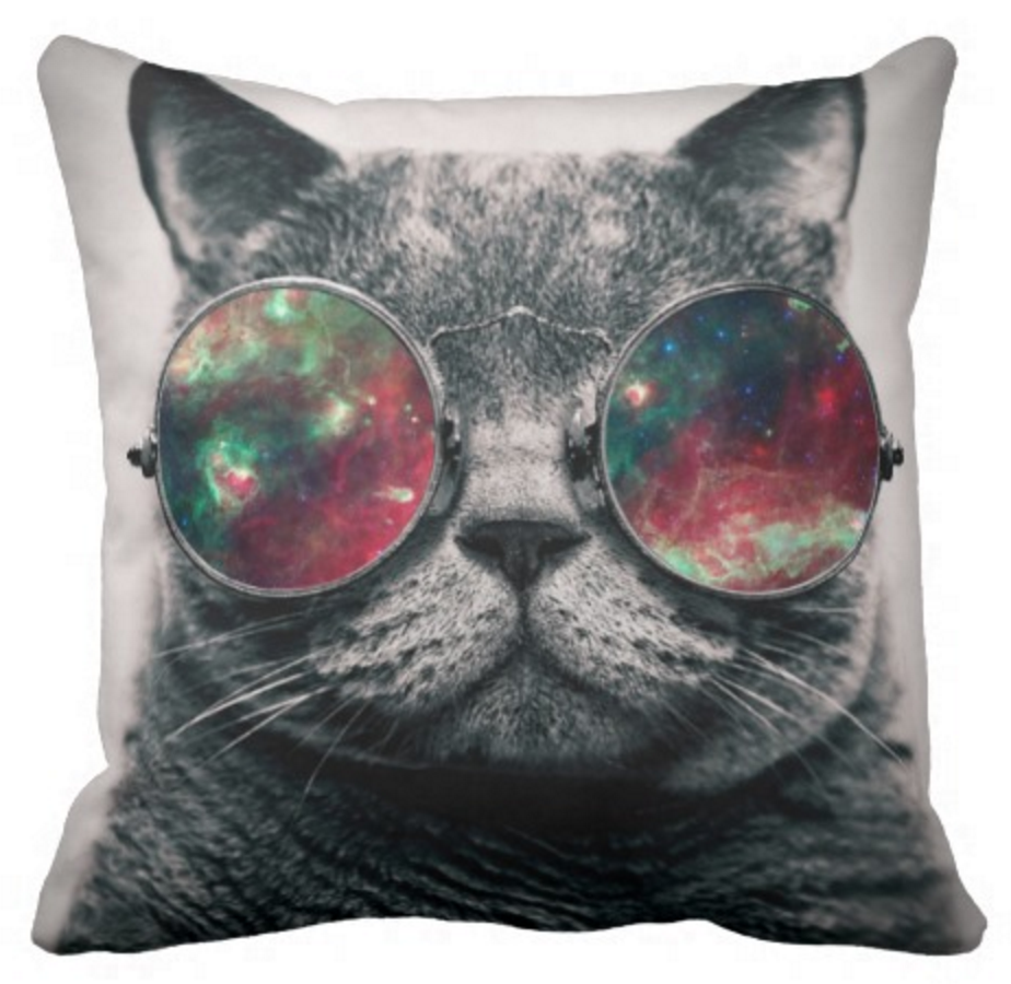 Cat wearing 'galaxy' sunglasses